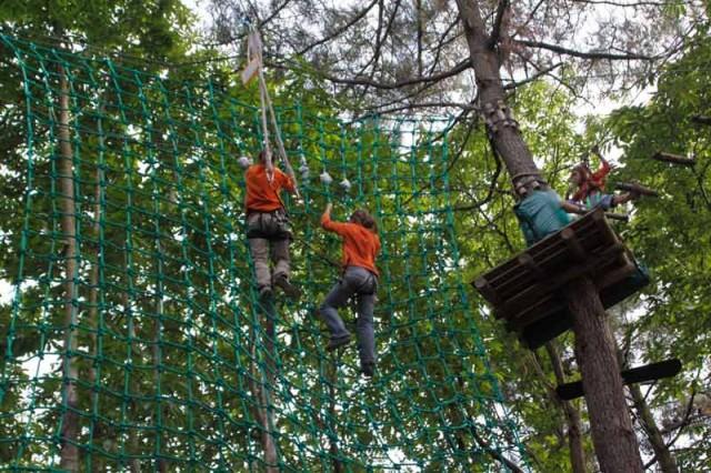 monkey-forest-passage-dans-les-filets-45267-1213091