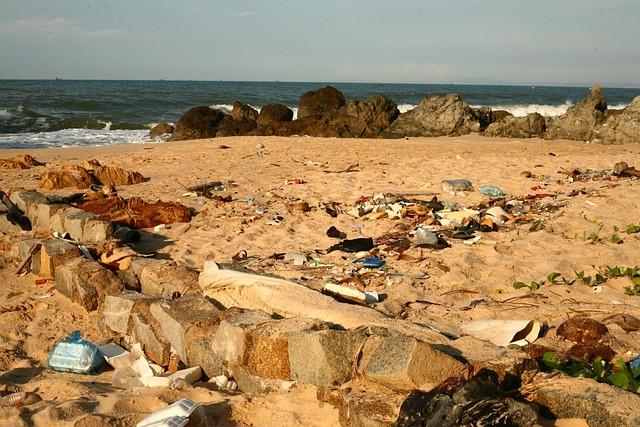 Recensement déchets échoués plage de la Source Pénestin