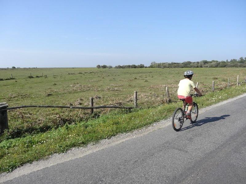 Balade en vélo en campagne