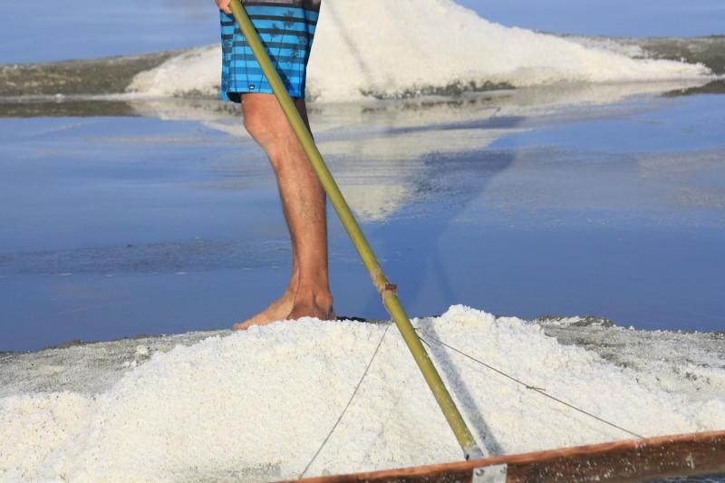 Salzgärten tour mit Arcensel