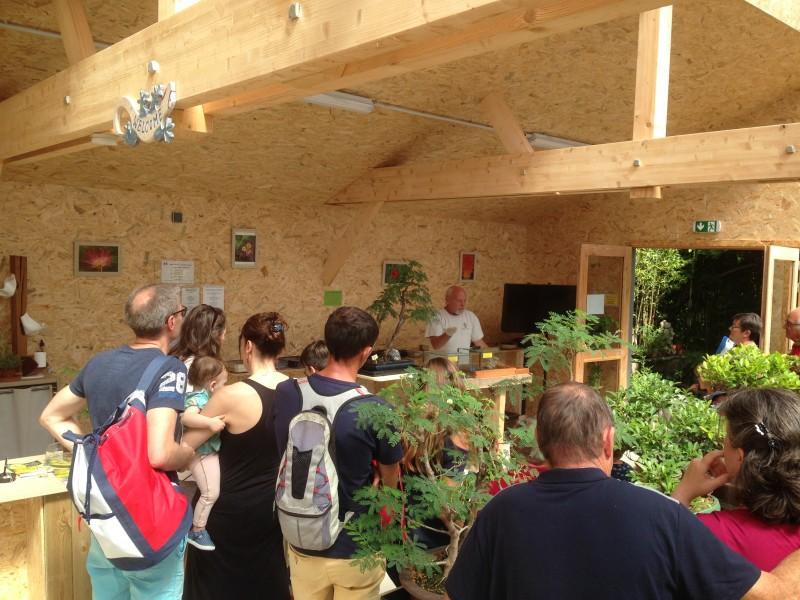 Tropicarium Bonsaï, la serre-le jardin exotique