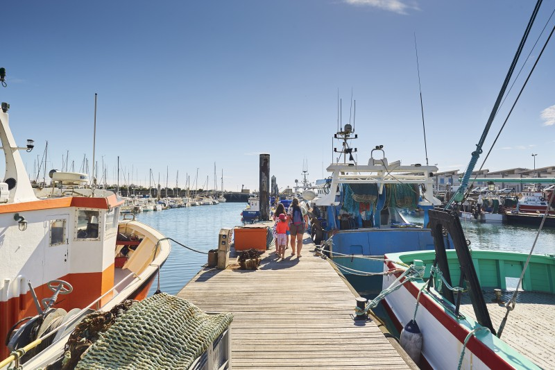La Turballe - Guided tour of the port - 1h