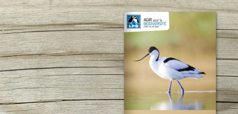 LPO44-refuge-oiseaux