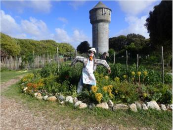Mon jardin au naturel - Jardins de Cramphore au Pouliguen
