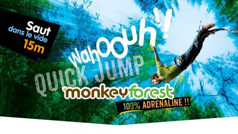 QUICK JUMP_CHUTE_LIBRE_MONKEYFOREST_SAINT_MOLF