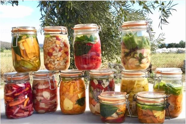Stage - La Lacto-fermentation