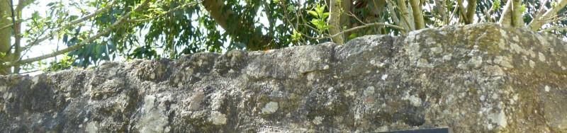 Tetiere patrimoine guérande - OTI La Baule Presqu'île de Guérande