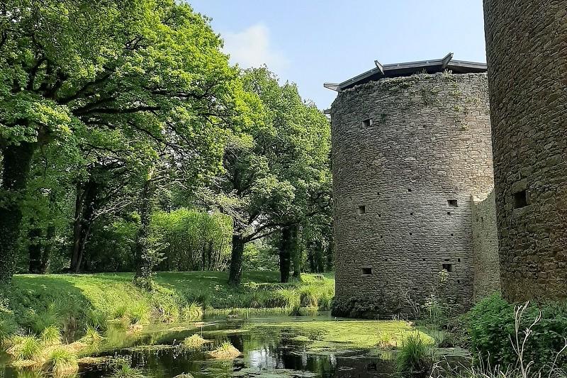 Visite à thème A la découverte du château, de sa faune et de sa flore - Ranrouët à Herbignac