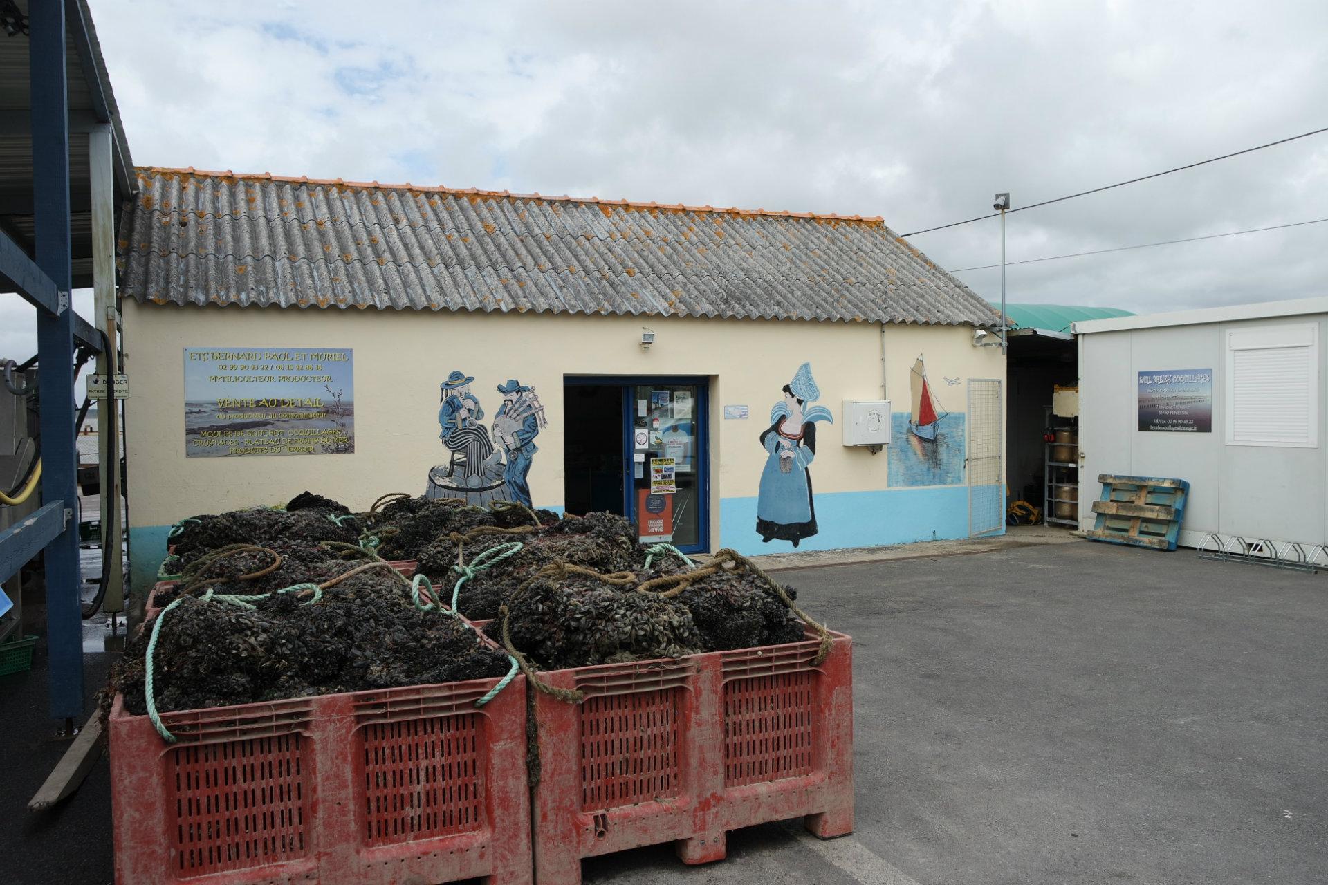 Muriel, mytilicultrice à Pénestin - boutique  - © CAP Atlantique