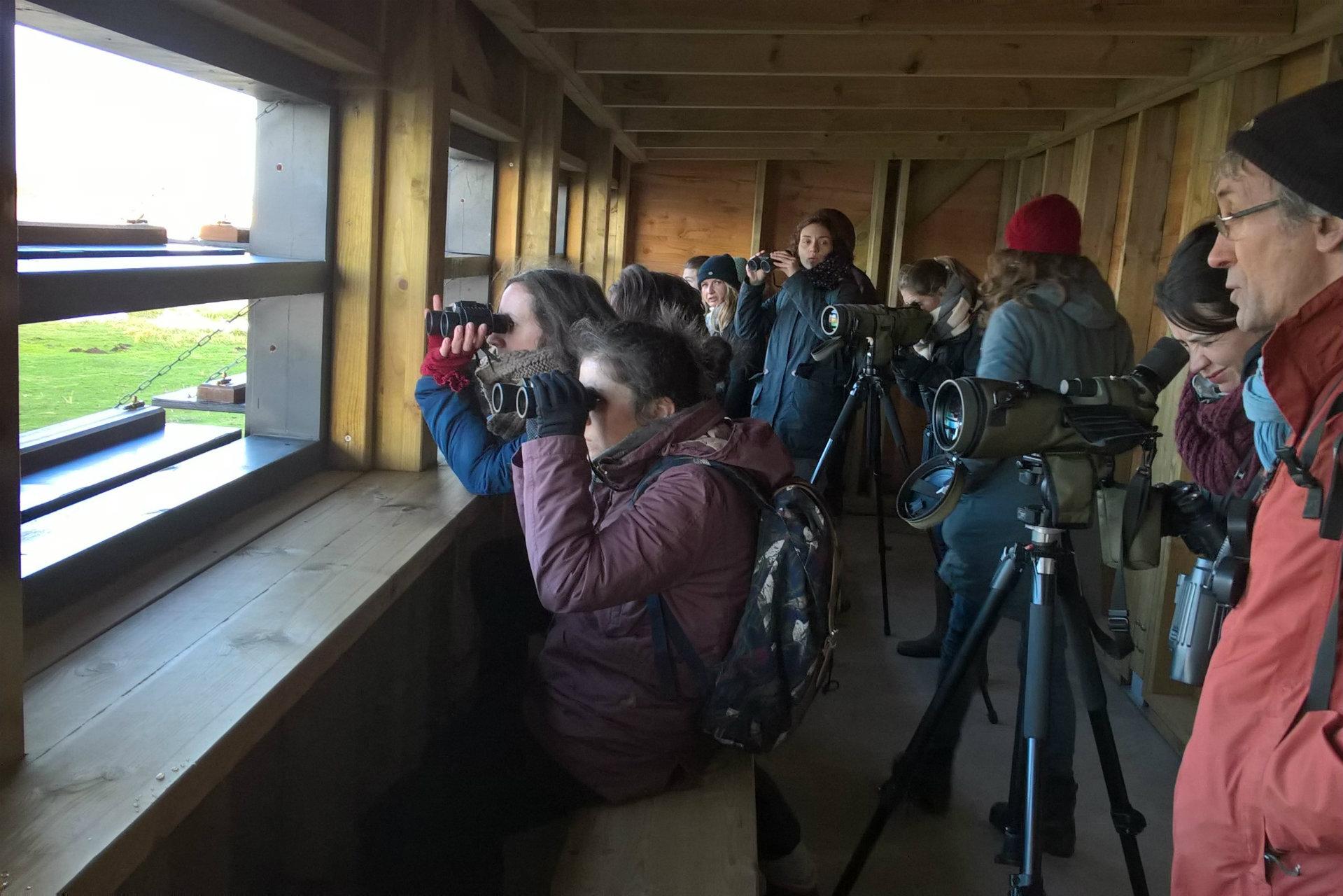 Sortie ornithologique avec les animateurs du Parc