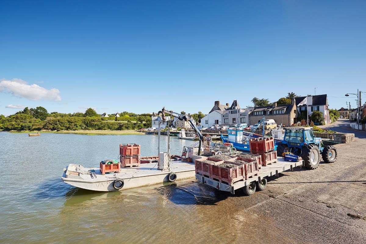 Port de Tréhiguier à Pénestin - Alexandre Lamoureux