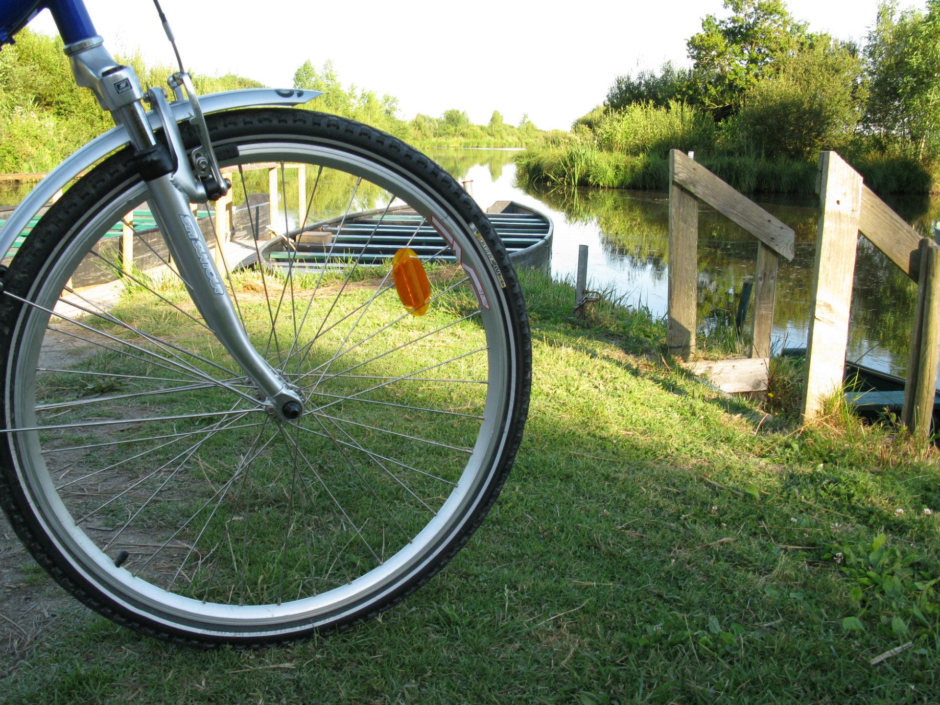 Vélo en Brière